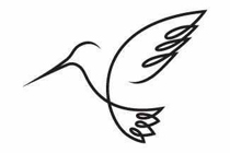 humming_bird_logo